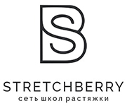 логотип StretchBerry