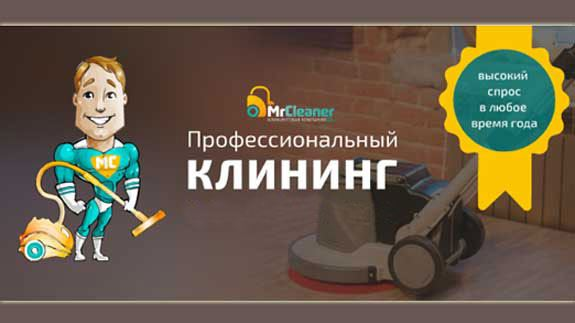 франшиза Mr. Cleaner