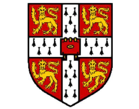 bcbb00dbb Франшиза школы языков ILS - франчайзинг предложение, цены, условия и ...